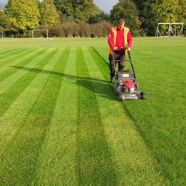 Pitch Grass Cutting